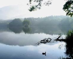 静かな湖 お葬式の流れ