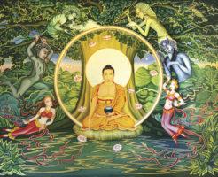 仏陀 菩提樹 お葬式の流れ